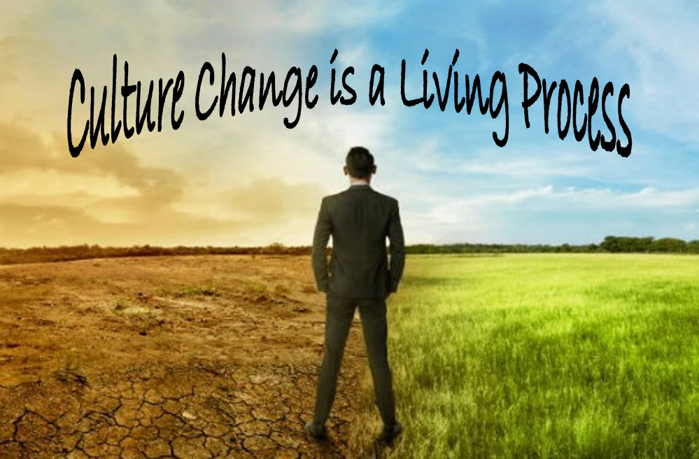 """Real World Improvement: Culture Change is a """"Living Process."""""""