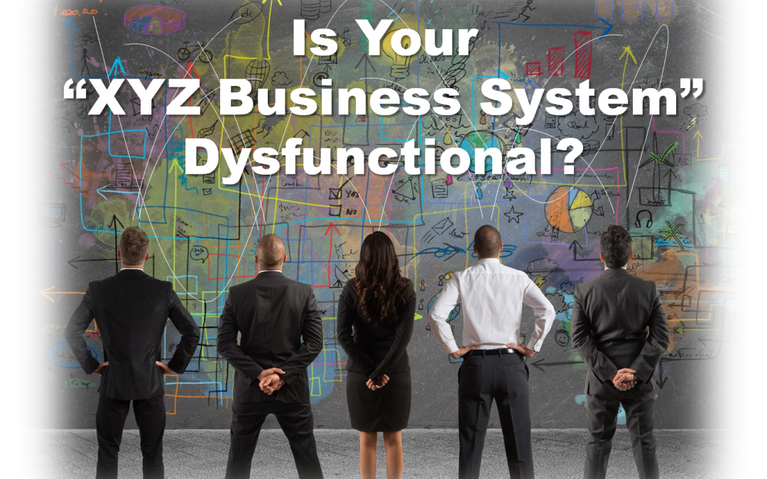 Real World Improvement:  Is Your XYZ Business System Dysfunctional?